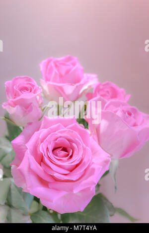 Amazing bunch of pink flower - Stock Image