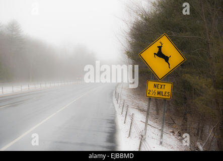deer crossing sign on highway in winter - Stock Image