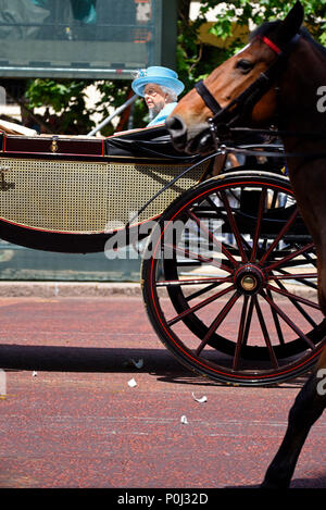 During Trooping the Colour a female threw a china mug or cup which smashed in front of The Queen's carriage. The Queen looked on as police apprehended the female - Stock Image