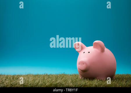 Piggy bank on green grass and blue sky - Stock Image