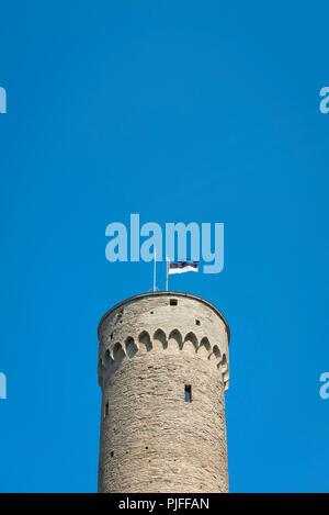 Tallinn Pikk Hermann, view of the flag of Estonia on top of the Pikk Hermann (Tall Hermann) tower on Toompea Hill in the center of Tallinn, Estonia. - Stock Image