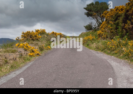 Lonesome Road #53. Remote Irish country road - Stock Image