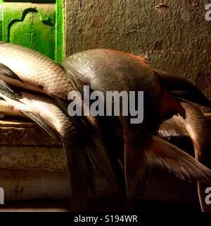 Fishmongers - Stock Image