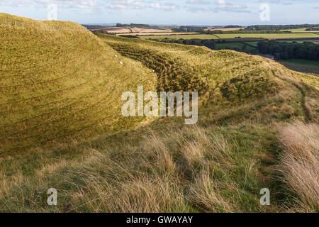 Ditchand ramparts on north side of Maiden Castle - Stock Image