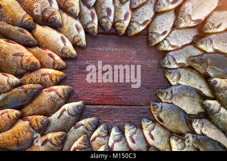 Fresh caught carp fish on wood. Catching freshwater fish on wood background. Round a lot of bream fish, crucian - Stock Image