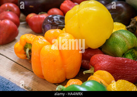 Macro closeup of brightly colored organic homegrown peppers and tomatoes - Stock Image