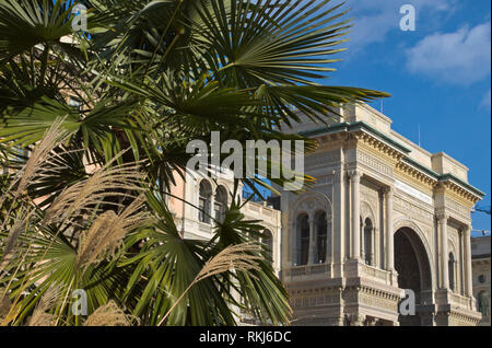 palm trees and Galleria Vittorio Emanuele, Milan, Italy - Stock Image