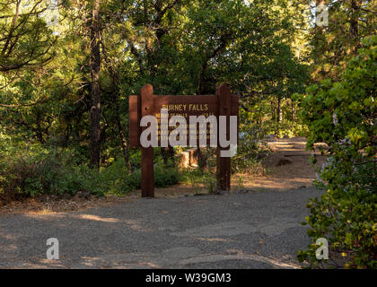 Overview of  trail and sign to Macarthur-Burney falls on a spring day - Stock Image