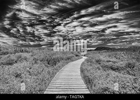 Boardwalk at Western Brook Pond, Gros Morne National Park, Newfoundland & Labrador, Canada - Stock Image