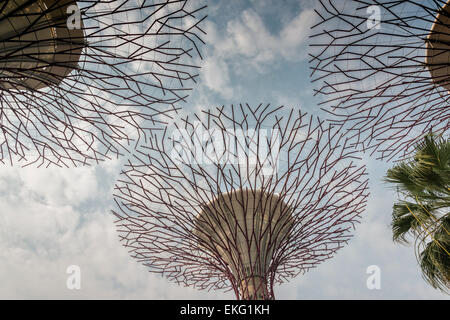 The supertree grove at Gardens by the bay, Singapore - Solar Trees - Stock Image