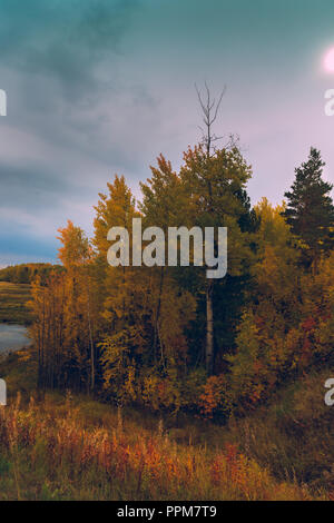 Over the autumn forest, gray green thunderclouds gather - Stock Image