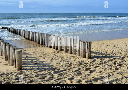 breakwaters in waves on the beach at the north sea in Domburg Holland - Stock Image