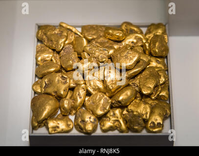Gold nuggets. The Field Museum, Chicago, Illinois, USA. - Stock Image