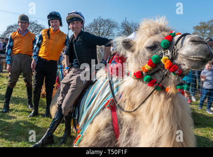 Hungerford, West Berkshire, UK. 19th Apr 2019. Melbourne 10 Racing Camel Racing winners AP McCoy (Sir Anthony Peter McCoy OBE, commonly known as AP McCoy ) former champion horse racing jockey Centre 1ST famous horse race trainer Jamie Osborne Left 2ND and Nico de Boinville racing jockey who competes in National Hunt racing. - Stock Image