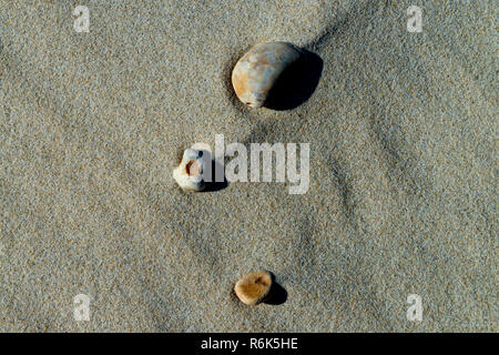 Isolated Rock lying in the sand- - Stock Image