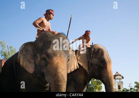 Thailand, Surin, Surin.  Suai mahouts and their elephants during the Surin Elephant Roundup festival. - Stock Image