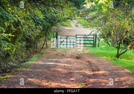 footpath with a wooden gate in a park of Sao Paulo, Brazil - Stock Image