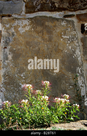 The Stones of Conquest. Carved Stones on the Side of Building J, Monte Alban, Oaxaca, Mexico - Stock Image