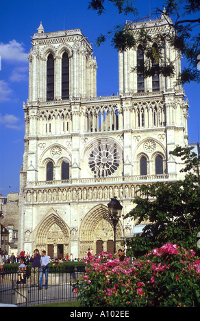 Notre Dame Cathedral, Paris, France in the spring - Stock Image