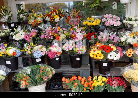 Bunches of cut flowers for sale outside a traditional corner grocery store in Dunbar, Vancouver, BC, Canada - Stock Image
