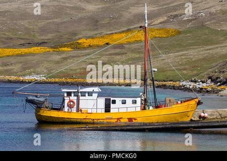 West Point Island, Falkland Islands. - Stock Image