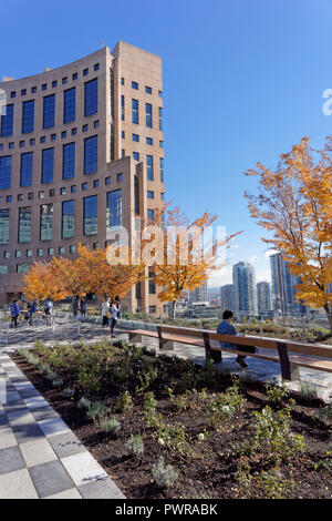 The Vancouver Public Library rooftop garden that opened on September 29, 2018, Vancouver, BC, Canada - Stock Image