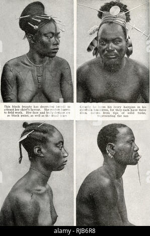 Four people of the Mangbettus (Mangbetu) tribe, Belgian Congo (now Democratic Republic of the Congo), Central Africa.  Showing decorative body scars, ivory hairpins, a nose plug, tooth earrings and a long ivory lip pin. - Stock Image