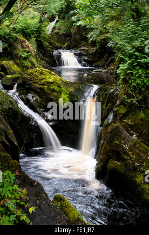 Pecca Twin Falls on the River Twiss, Ingleton Waterfalls Trail, Ingleton in the Yorkshire Dales National Park, North - Stock Image