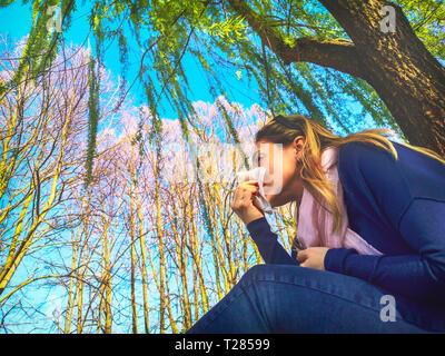 blowing nose respiratory allergic seasonal flu springtime - Hay fever pollen allergy . - Stock Image
