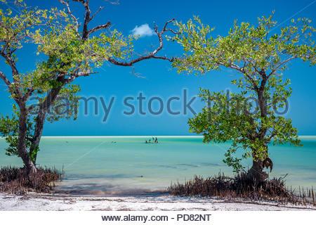 Holbox island beach - Stock Image