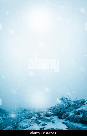 Snowy winter landscape - Stock Image