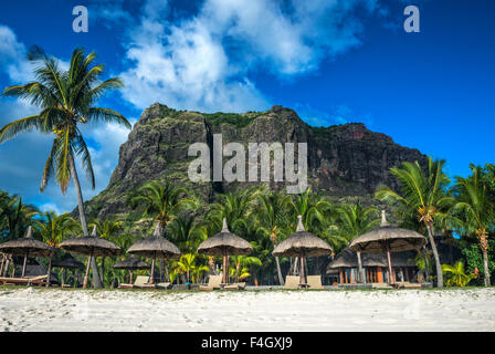 The Le Mont Brabant mountain in Mauritius rising behind palm trees on the sandy beach - Stock Image