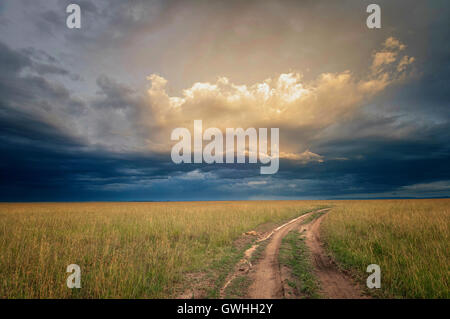 A rural dirt road surrounded by grass leads to the horizon with dramatic sky. - Stock Image