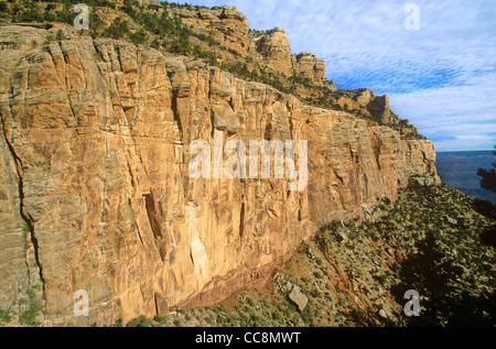 Cliff of Coconino Sandstone viewed from Bright Angel Trail, below the South Rim of Grand Canyon National Park, Arizona, - Stock Image