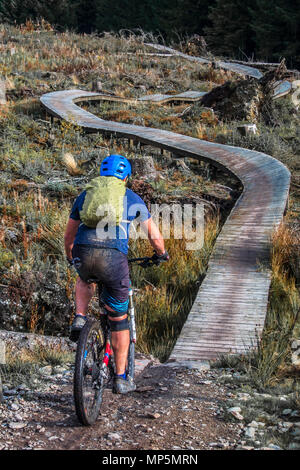 Coed Llandegla mountain bike trail, Wales. - Stock Image
