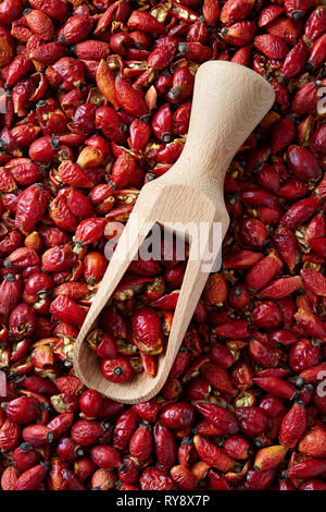 Dried rose hip (close-up with wooden scoop) - Stock Image
