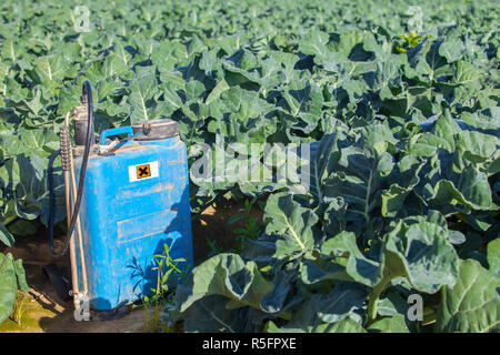 Backpack fumigation sprayer at brocoli field. Negative effects of pesticide application concept - Stock Image