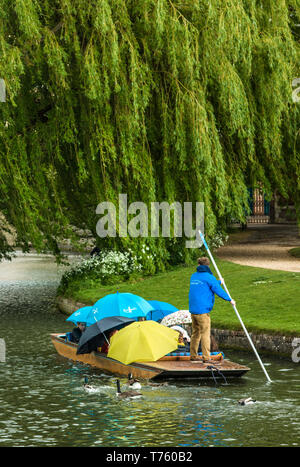 Punting in the rain with tourists sheltering under umbrella on the river Cam, Cambridge, Cambridgeshire, England, UK. - Stock Image