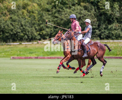 Leadenham Polo Club, Lincolnshire, England - A polo match being played on a shot summers afternoon - Stock Image