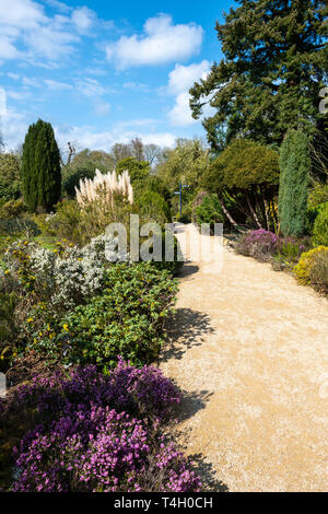 Winter garden at Belsay Hall, an early 19th Century mansion house, in Northumberland, England, UK - Stock Image