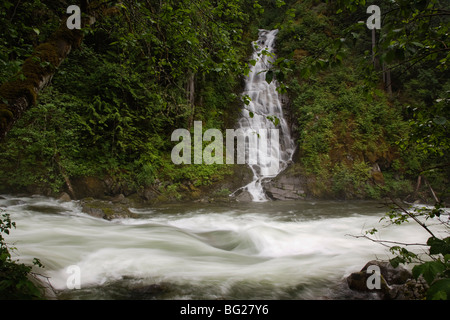 Eureka Falls cascades into the rushing waters of Silverhope Creek, British Columbia, Canada - Stock Image