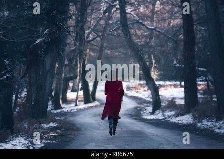 a young woman in a red dress on a small street in the middle of a wintery forest with snow - Stock Image