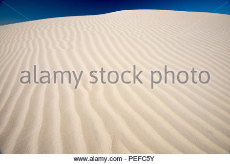 Sand Dollar Beach on Isla Magdalena. - Stock Image
