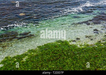 Clear sea water background. Transparent sea surface. Beautiful seascape of the Black Sea coast near Tsarevo, Bulgaria. Arapya bay. - Stock Image