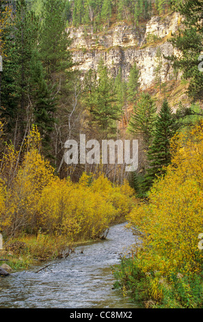 Spearfish Canyon in Black Hills National Forest, south of Spearfish, South Dakota, AGPix_0644 - Stock Image