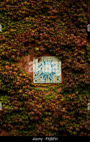 Vine-covered wall and ceramic tile with a sun motif in Montfort d'Alba, Italy - Stock Image