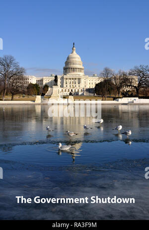 Frozen Government Shutdown Political Satire showing the US Capitol with Iced Reflecting Pool and Seagulls, Washington DC, Winter, January 15, 2018 - Stock Image