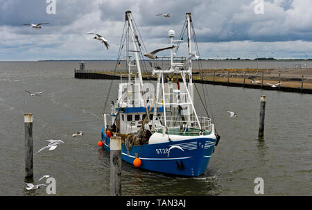 Trawler ST 28 Glückauf entering the mouth of the Eider river, Tönning, Schleswig-Holstein, Germany - Stock Image