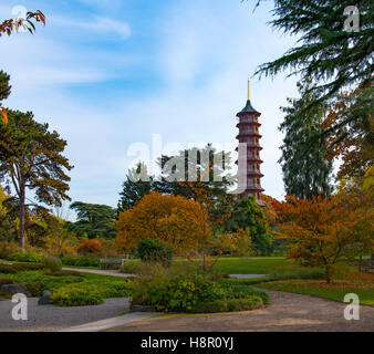 Autumn in Kew Garden, with the pagoga in the background - Stock Image