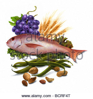 Food Group & Fish - Stock Image